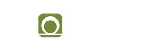 fionec GmbH. Fiber optic sensor technologies